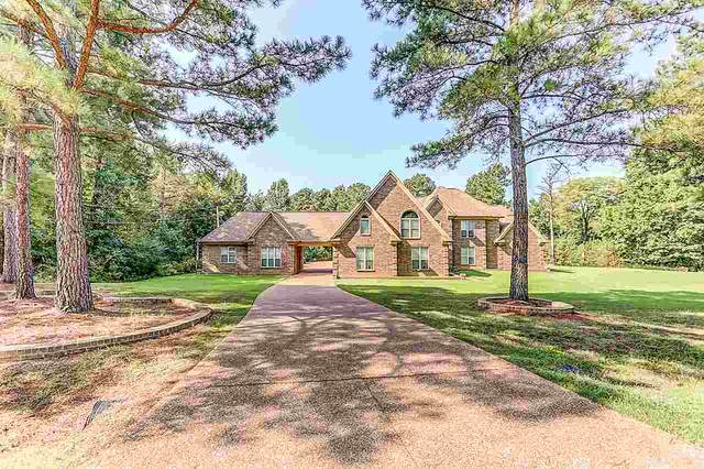 83 Dollie Irene Dr, Mount Pleasant, MS 38649 (#10086151) :: The Melissa Thompson Team