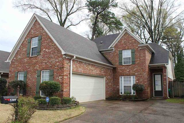 5389 Mckyle Cv, Memphis, TN 38120 (#10086530) :: All Stars Realty
