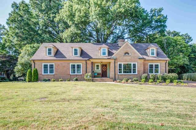 1081 Oak Ridge Dr, Memphis, TN 38111 (#10086534) :: RE/MAX Real Estate Experts