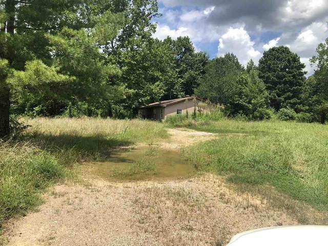825 Joann Rd, Unincorporated, TN 38068 (MLS #10086596) :: The Justin Lance Team of Keller Williams Realty