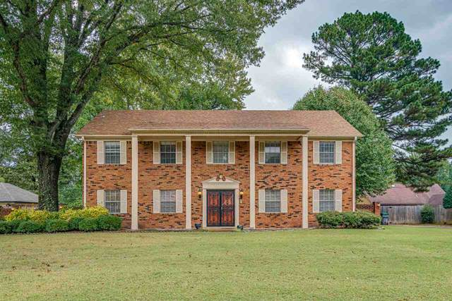 3754 Shady Hollow Ln, Memphis, TN 38116 (#10086989) :: The Dream Team