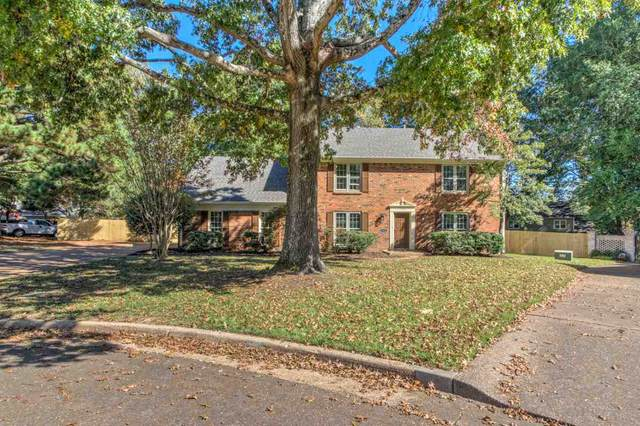 7964 Circle Trees Cv, Germantown, TN 38138 (#10087069) :: All Stars Realty