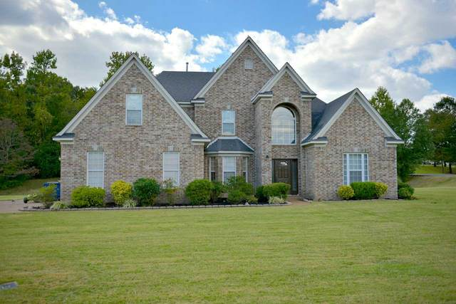 8051 Camptown Cv, Olive Branch, MS 38654 (#10087084) :: The Dream Team