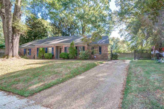 192 Lorece Ln, Memphis, TN 38117 (#10087111) :: The Dream Team