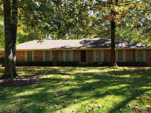 180 Island View Dr, Counce, TN 38326 (#10087130) :: J Hunter Realty