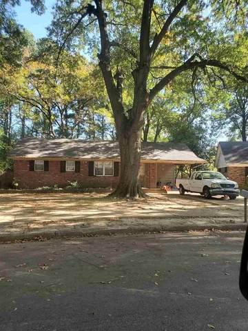 3410 Riney Ave, Memphis, TN 38127 (#10087390) :: Bryan Realty Group