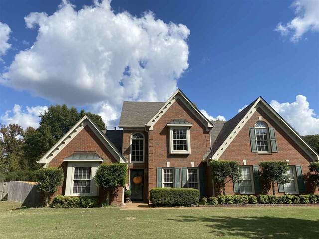 8578 Riverwood Farms Park, Memphis, TN 38016 (#10087408) :: The Wallace Group - RE/MAX On Point