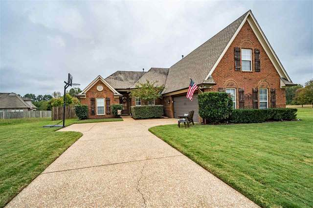 125 Meadowland Ln, Somerville, TN 38068 (#10087635) :: RE/MAX Real Estate Experts