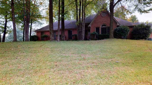 1556 Teal Wing Ln, Memphis, TN 38016 (#10087818) :: The Melissa Thompson Team