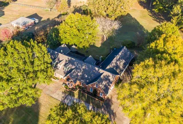 5146 Holmes Oaks Dr, Collierville, TN 38017 (#10088730) :: J Hunter Realty