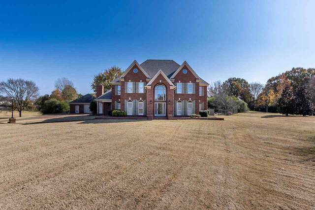 11675 Stone Meadow Cv, Unincorporated, TN 38028 (#10088795) :: The Wallace Group - RE/MAX On Point