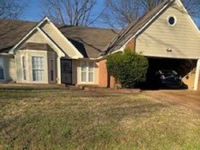 6528 Birch Walk Dr, Memphis, TN 38115 (MLS #10088970) :: Gowen Property Group   Keller Williams Realty
