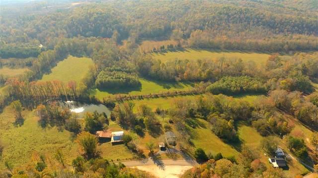1790 Holland Creek Rd, Savannah, TN 38372 (#10089041) :: J Hunter Realty