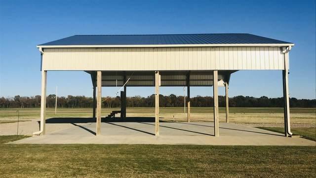 1116 Declan Ln, Savannah, TN 38372 (MLS #10089101) :: Gowen Property Group | Keller Williams Realty