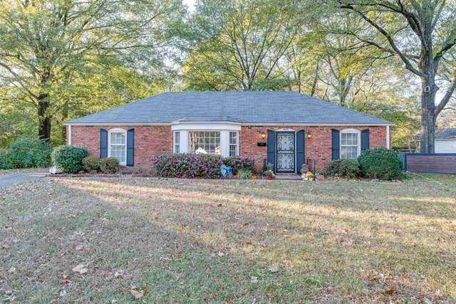 1673 Lyford Cv, Memphis, TN 38119 (MLS #10089119) :: Gowen Property Group   Keller Williams Realty