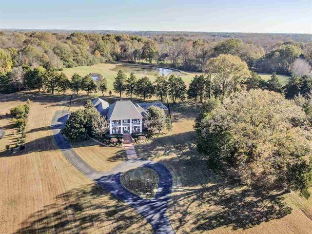 11543 Country Forest Dr, Unincorporated, TN 38017 (#10089296) :: J Hunter Realty