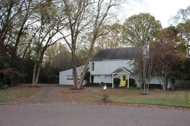 2300 Mcvay Cv, Germantown, TN 38138 (#10089375) :: The Wallace Group - RE/MAX On Point