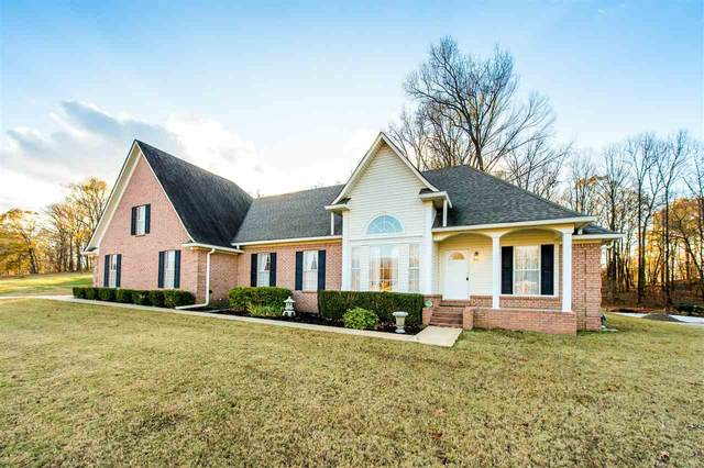 141 Haley Ln, Unincorporated, TN 38058 (#10089699) :: The Wallace Group - RE/MAX On Point