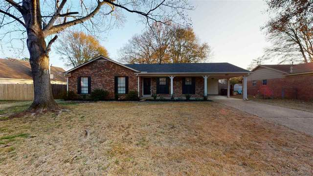 365 Casca Cv, Collierville, TN 38017 (#10090571) :: Bryan Realty Group
