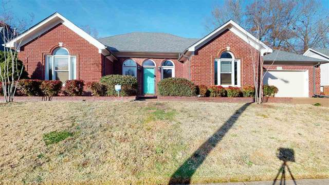 766 Vivian Leigh Cv, Collierville, TN 38017 (#10090814) :: The Wallace Group - RE/MAX On Point