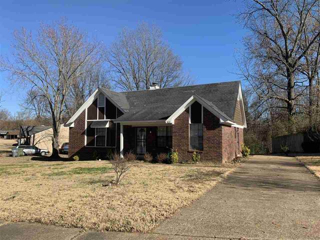 3122 Bayview Dr, Memphis, TN 38127 (#10090831) :: The Melissa Thompson Team