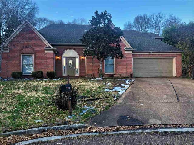 293 Spruce Glen Cv, Memphis, TN 38018 (#10090965) :: The Wallace Group at Keller Williams