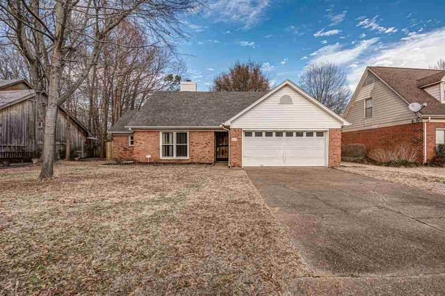 8516 Bazemore Rd, Memphis, TN 38018 (MLS #10090983) :: The Justin Lance Team of Keller Williams Realty