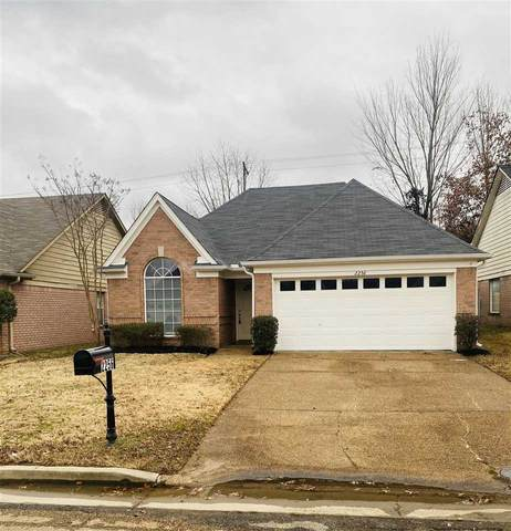 2256 Lakehill Ct, Memphis, TN 38016 (#10091190) :: The Wallace Group - RE/MAX On Point
