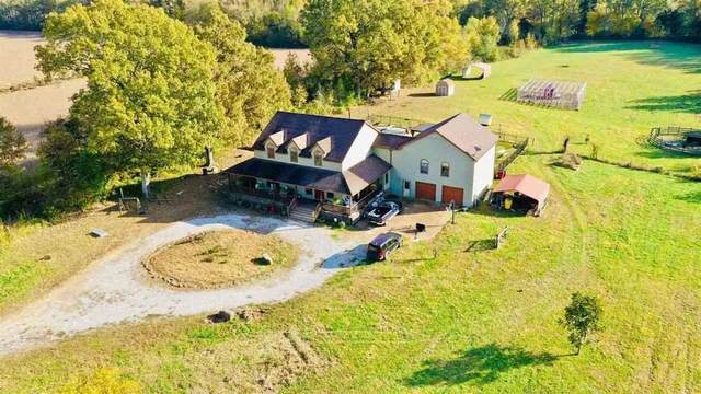 10601 Moose Rd, Unincorporated, TN 38053 (#10091620) :: The Dream Team