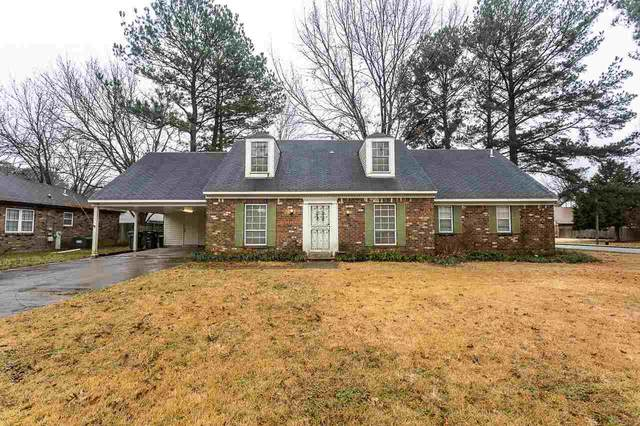 6295 Spey Cv, Memphis, TN 38119 (#10091762) :: The Dream Team
