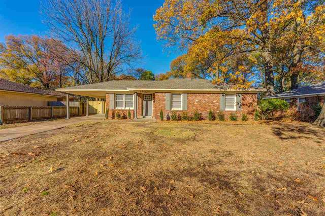 4700 Willow Rd, Memphis, TN 38117 (#10091899) :: RE/MAX Real Estate Experts