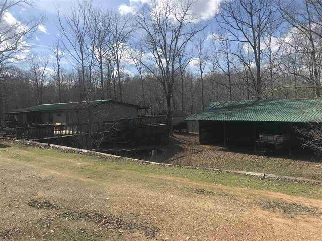 240 Pompeys Branch Rd, Savannah, TN 38372 (#10091967) :: RE/MAX Real Estate Experts