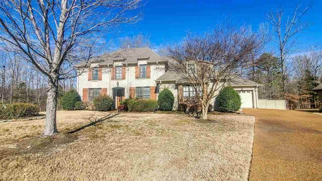 698 Rolling Rock Cv, Memphis, TN 38018 (#10092083) :: J Hunter Realty