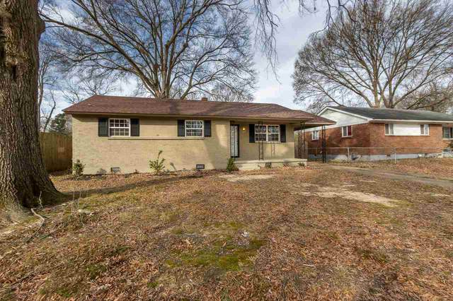 517 Malboro St, Memphis, TN 38120 (#10092320) :: The Wallace Group - RE/MAX On Point