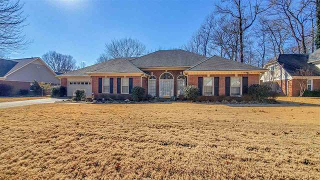 8687 Beckenham Dr, Memphis, TN 38016 (#10092321) :: The Wallace Group - RE/MAX On Point