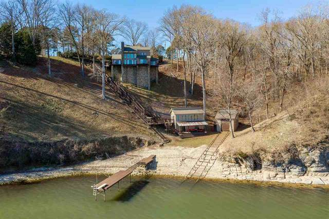 55 Coastview Ln, Counce, TN 38326 (#10092324) :: Bryan Realty Group