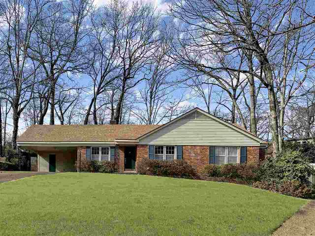 1319 Glen Oaks Dr, Memphis, TN 38119 (MLS #10092490) :: The Justin Lance Team of Keller Williams Realty