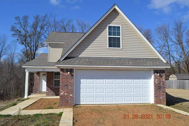 267 Richardson Lakes Dr, Unincorporated, TN 38023 (#10092933) :: The Dream Team