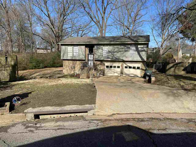 4666 Suesand Cv, Memphis, TN 38128 (MLS #10093081) :: Gowen Property Group | Keller Williams Realty