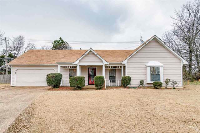 6516 Bald Cypress Cv, Memphis, TN 38141 (#10093129) :: The Wallace Group - RE/MAX On Point