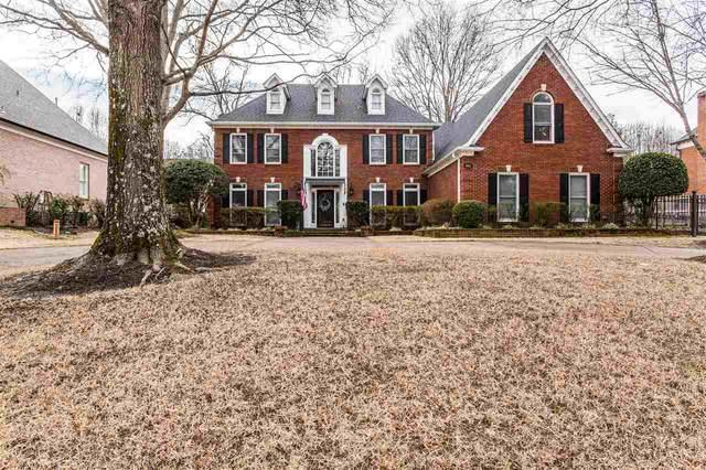 8825 Somerset Ln, Germantown, TN 38138 (MLS #10093341) :: Gowen Property Group | Keller Williams Realty