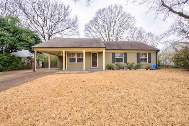 5136 Sequoia Ave, Memphis, TN 38117 (MLS #10093729) :: Gowen Property Group | Keller Williams Realty