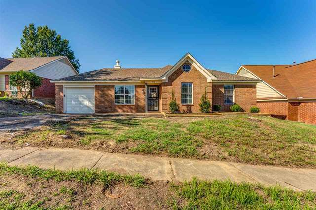 5540 S Angelace Dr, Unincorporated, TN 38135 (#10093738) :: The Wallace Group at Keller Williams