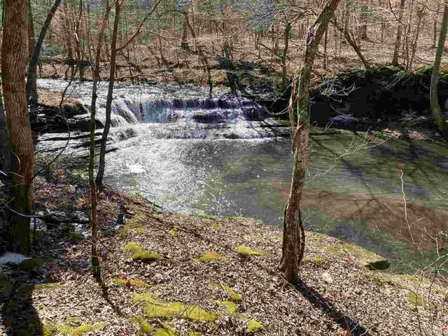1742 Moccasin Creek Rd, Waynesboro, TN 38485 (#10093834) :: J Hunter Realty