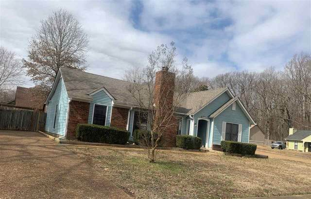4475 Window Dr, Unincorporated, TN 38135 (#10093893) :: The Melissa Thompson Team