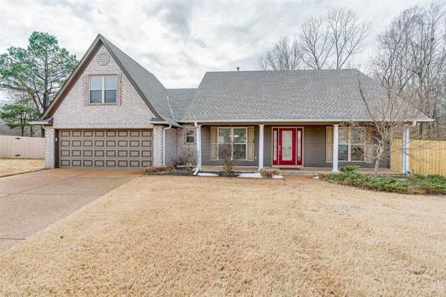 9345 Cedar Brook Cv, Memphis, TN 38016 (#10093995) :: The Wallace Group - RE/MAX On Point