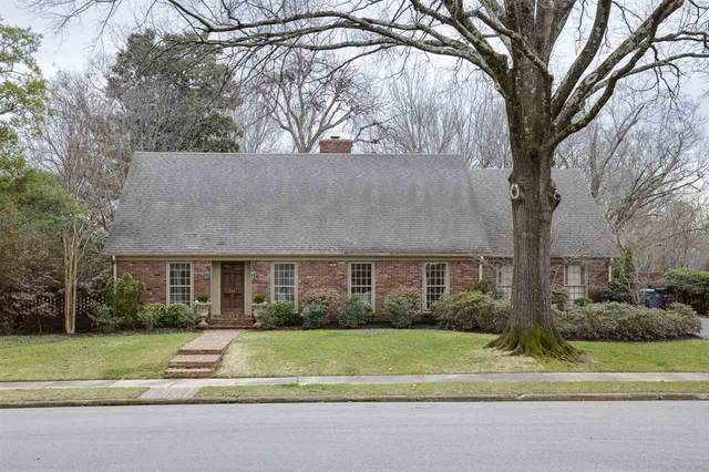 344 Clawson Cv, Memphis, TN 38117 (#10094370) :: The Wallace Group - RE/MAX On Point