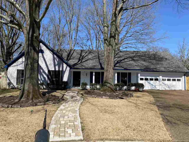 6230 Lorne Cv, Memphis, TN 38119 (#10094545) :: The Wallace Group - RE/MAX On Point