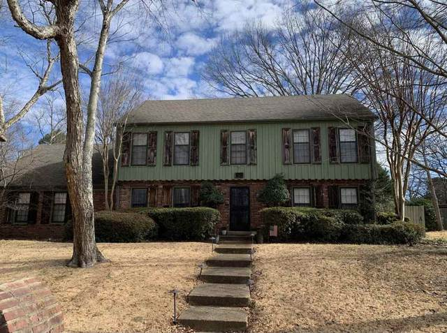 2704 Greenmill Dr, Memphis, TN 38119 (#10094687) :: Bryan Realty Group