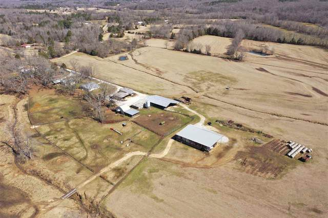 COUNTY ROAD 219 E Address Not Published Rd E, Blue Springs, MS 38828 (#10094716) :: J Hunter Realty